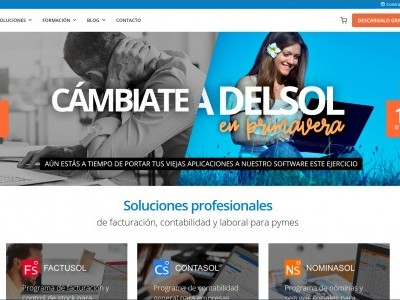 Software DELSOL